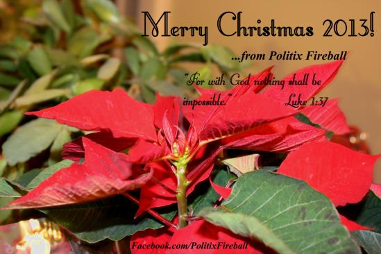 PF Christmas 2013