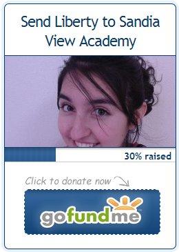 Donate-toLiberty
