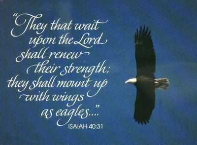 Sunday Inspiration: They that wait upon the Lord ...